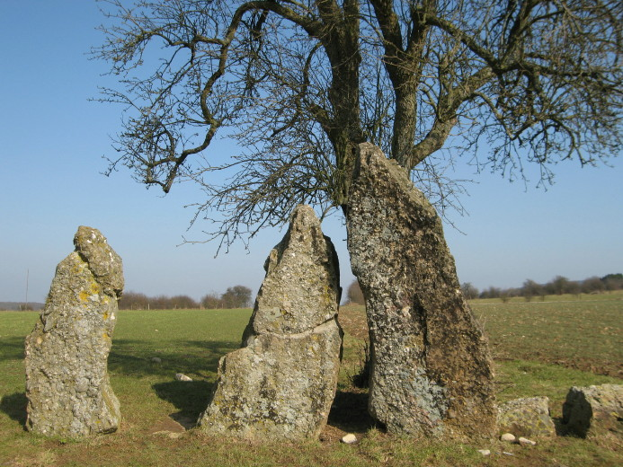 Menhirs Oppagne