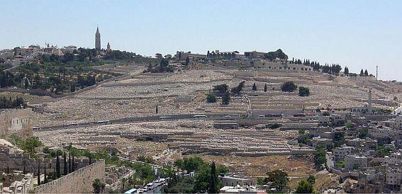 Le mont des oliviers vu de la vieille ville